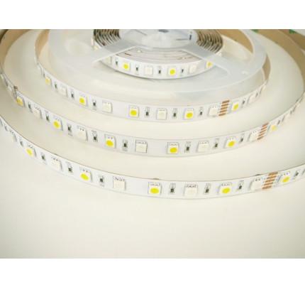 RGB+WW 24V LED pásek vnitřní RGBW